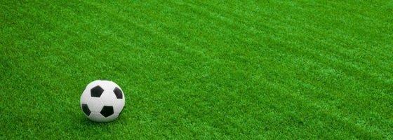 Verde Sportivo - Fabbri Vivai Cura e Progettazione Aree Verdi ad Arezzo, Siena, Perugia e Firenze
